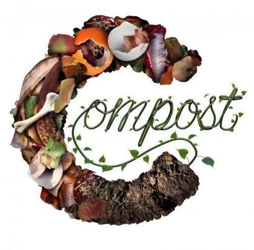 Bruk av kompost og kompost-te i storskala landbruk
