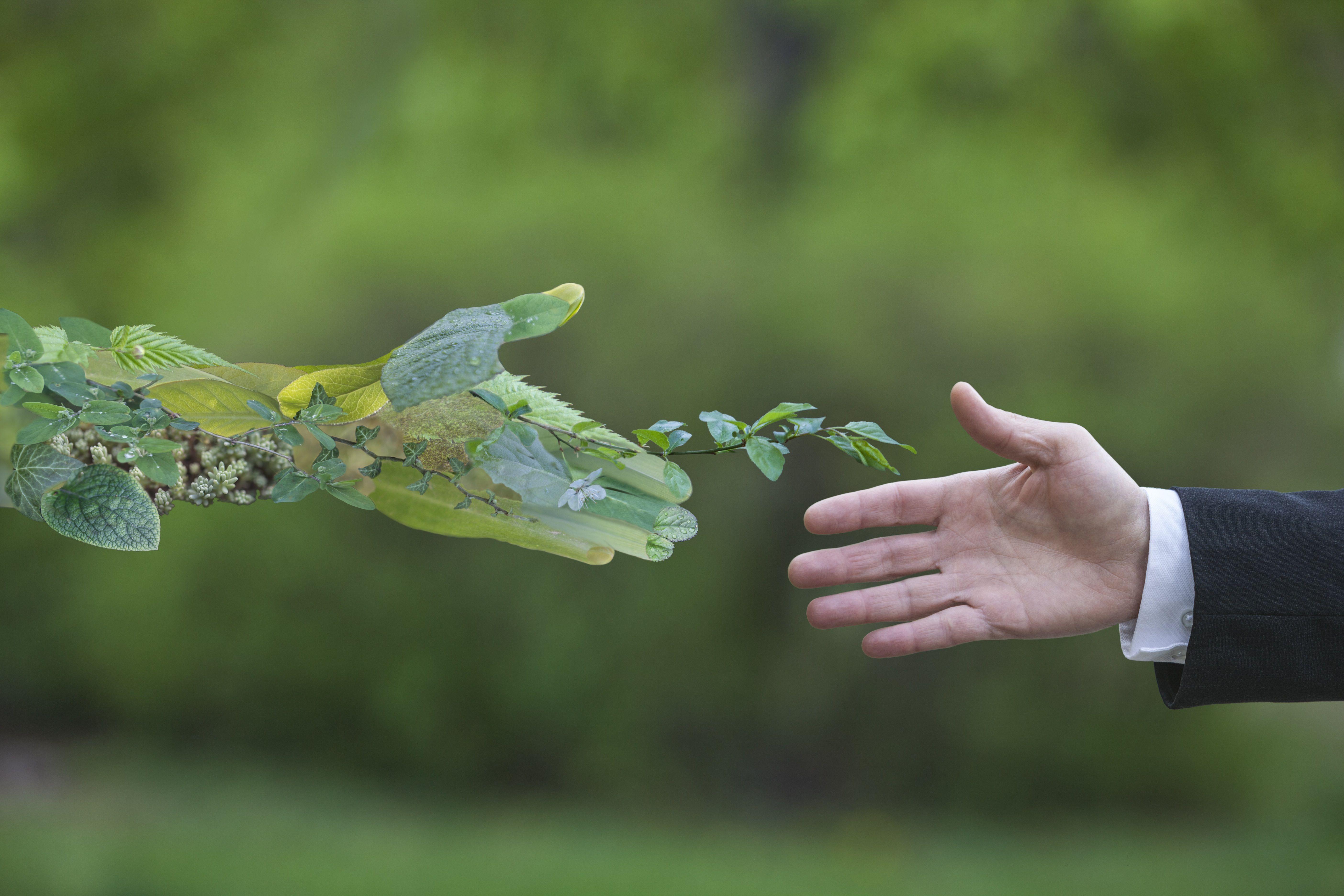 Den Nye Grøne Revolusjonen del 2: Menneske og natur på same lag