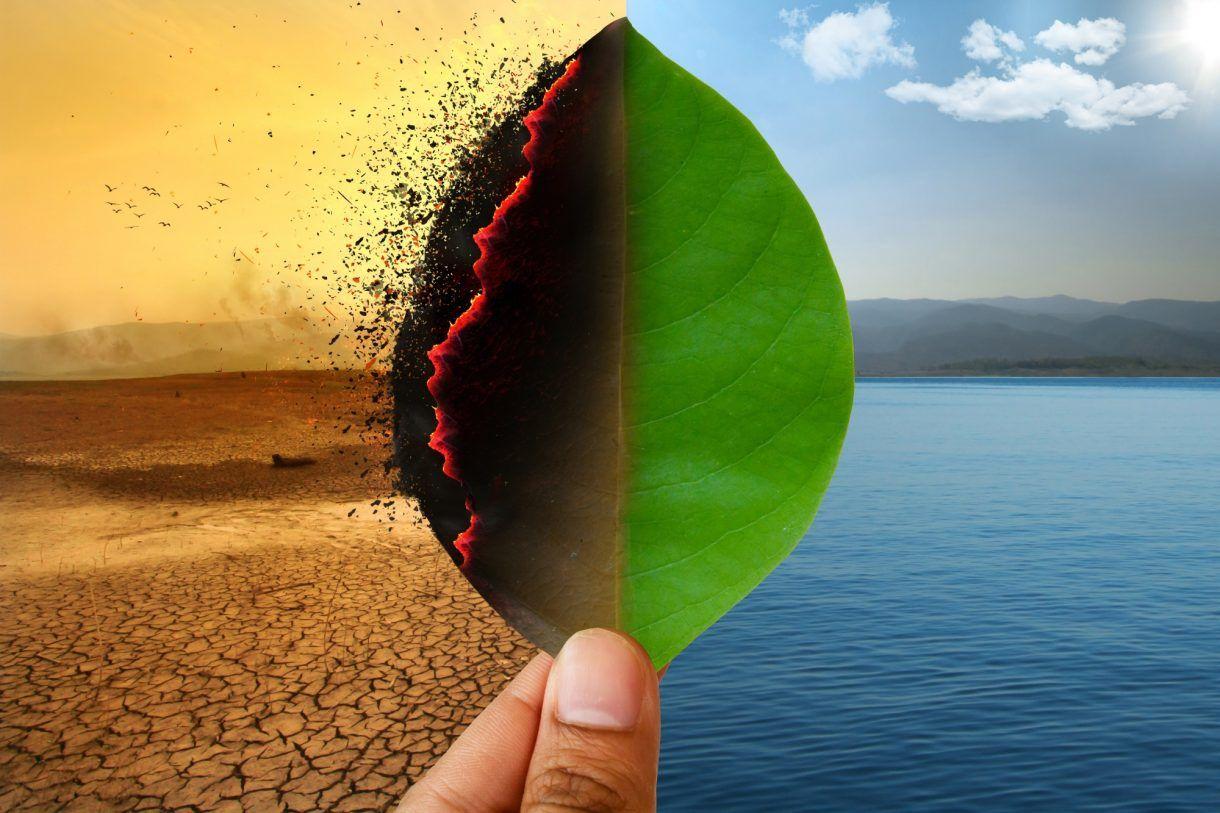 Frå tradisjonelt til kompostmoderne