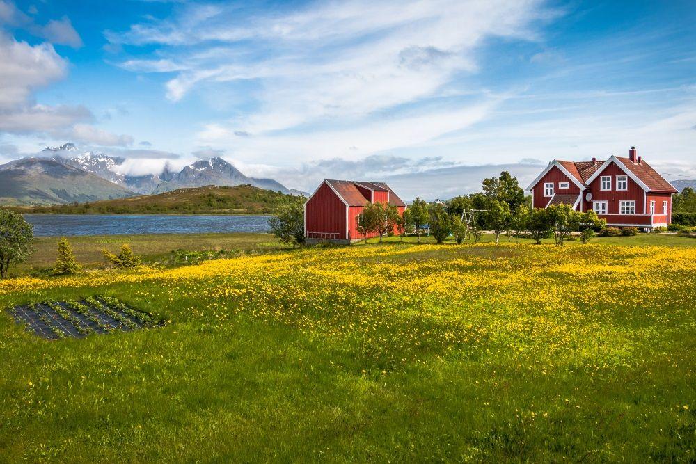 Frå rørsle til sekt? Om «norsk landbruk» ved inngangen til eit nytt tiår